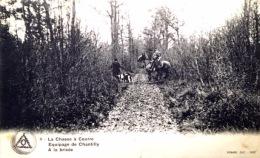 # La Chasse à Courre - équipage De Chantilly - à La Brisée - Chantilly