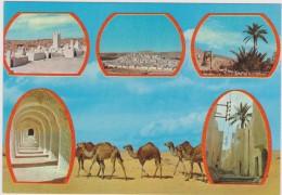 AFRIQUE DU NORD,ALGERIE,ALGERIA,MAGHREB,GHARDAIA,CARAVANE