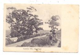 SOUTH AFRICA - UITENHAGE, Cannon Hill, 1907 - Südafrika