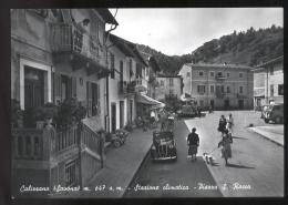 BELLA CARTOLINA FINE ANNI  '40 DI CALIZZANO (SAVONA) CON AUTO + AUTOBUS + CAMION E.....    CAGNOLINO - Autobus & Pullman