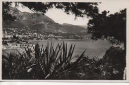 CPA - PHOTO - MONTE CARLO - VU DES JARDINS DE MOANCO - 333 - RELLA - Monte-Carlo