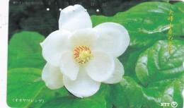 Japan, 331-428 E, Famous Flower Of Omine Mountain Range - Oyama Magnolia, 2 Scans. - Japón