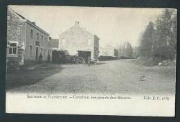 Souvenir De Plainevaux. Carrefour, Vue Prise De Chez Materne.  Attelage, Carte Animée.   2 Scans. - Neupré