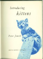 LIBRI SUI GATTI INTRODUCING KITTENS DI PETER JOWETT PER SPRING BOOKS LONDON - Altri