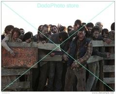 Walking Dead - 0333 - Glossy Photo 8 X 10 Inches - Berühmtheiten
