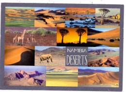 NAMIBIA, Deserts - Namibia