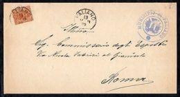 1899 REGNO 20 CENT. RE UMBERTO I ISOLATO SU PIEGO CON TESTO DA PALIANO PER ROMA - Ohne Zuordnung