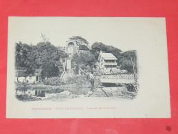 SAINT PIERRE /  MARTINIQUE   1902  / FORT DE FRANCE   / CASCADE DE GUEYDON   CIRC NON - Fort De France