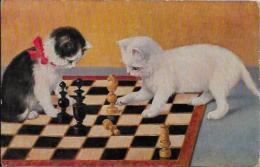 CPA Jeu échecs Chess Non Circulé Chat Cat écrite - Chess