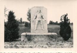 PINON - Monument Des 7 ème Et 47 ème Bataillons BCA Chasseurs Alpins Juin 1940 - Autres Communes