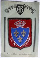 écusson Blason AB Cuir Sur Feutrine Ile De France N°5698 - Ecussons Tissu