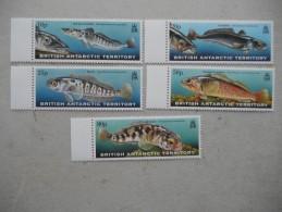 Y199 BAT Brit Antarctic Terr., Gebiete Antarktis 288 - 292 Mnh Fisch Fish - Ungebraucht
