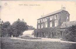 Ciney - Château St Quentin (petite Animation, Hermans) - Ciney