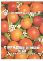 Tarjeta Salon Monografico De La Naranja - Spanje