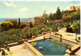Espagne -  Almeria - Jardines De La Alcazaba - Fardi Barcelona - 1147 - Almería