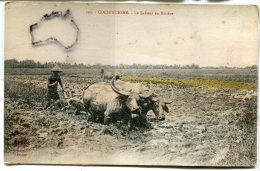 - 102 - Viet-Nam - COCHINCHINE - Le Labour En Rivière, épaisse, Un Peu De Couleurs, écrite 1919,  Pour Le JuraBE, Scans. - Viêt-Nam
