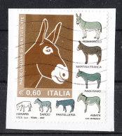Italia   -   2007. Razze Italiane Asinine. Italian Breeds Of Donkeys.