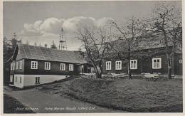 AK Duszniki Zdroj Bad Reinerz Gasthaus Hohe Mense Turm Baude Orlica Vrchmezi Adlergebirge Grunwald Sattel Giesshübel - Sudeten