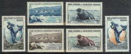 Mwe0767 FAUNA VOGELS PINGUIN ZEEHOND SEAL BIRDS PENGUIN TERRES AUSTRALES ET ANTARCTIQUES FRANCAISES 1956 PF/MNH + ONG/MH - Zonder Classificatie