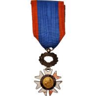France, Éducation Physique, Medal, 1933, Good Quality, Argent - Militari