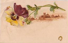 Pensée       16       ( Pensées Et Paysage ) - Flowers