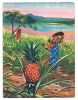 Chromo Offert Par Astra - Des Tropiques à Notre Table : L'ananas ( Jean De Léry ... ) - Autres
