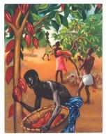 Chromo Offert Par Astra - Des Tropiques à Notre Table : Le Chocolat ( Cacaoyer ... ) - Autres