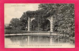 38 ISERE VINAY, Porte Du Château Féodal De Montvinay Et Le Lac, (S. Convert) - Vinay