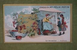 Félix POTIN - Chromo Sujet Botanique - Nature - Le Groseiller - Confitures - Imp. Champenois - Cioccolato