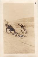 """Photo 14-18 Soldats Français Avec """"un Crapouillot Allemand"""" - Minenwerfer Tracté (A150, Ww1, Wk 1) - Weltkrieg 1914-18"""