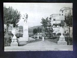 LAZIO -FROSINONE -VITICUSO -F.G. LOTTO N°548 - Frosinone
