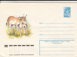 45274- KHULAN, DONKEY, COVER STATIONERY, 1978, RUSSIA-USSR