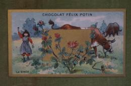 Félix POTIN - Chromo Sujet Botanique - Nature - Le Trèfle - Imp. Champenois - Cioccolato