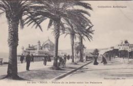 France Nice Palais de la Jetee entre les Palmiers