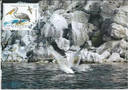 """Macedonia.Prespa Lake.Island Of,,Golem Grad"""".Birds,pelicans.Maximum Card - Macedonia"""