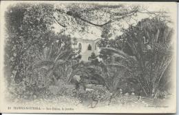 CP - Algérie - Hamman - R - Hira - Les Bains Le Jardin - Algérie