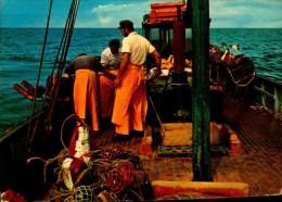 ILE DE RE...LA PECHE AUX HOMARDS....CPM ANIMEE - Pêche