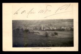 55 - SALMAGNE - VUE GENERALE - EDITEUR H. VIOLLE - Andere Gemeenten