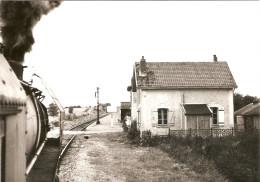 Photographie De Train, Le Train Paris-Le Tréport En Gare De Grez-Gaudechart (60), Photo Dahlström De 1965, Loco 141R - Trains