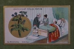 Félix POTIN - Chromo Sujet Botanique - Nature - La Bourrache - Sudorifique - Imp Champenois - Cioccolato
