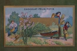 Félix POTIN - Chromo Sujet Botanique - Nature - Le Jonc Fleuri - Vannerie - Imp Champenois - Cioccolato