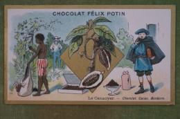 Félix POTIN - Chromo Sujet Botanique - Nature - Le Cacaoyer - Chocolat, Cacao, Bonbons - Imp Champenois - Cioccolato