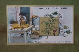Félix POTIN - Chromo Sujet Botanique - Nature - L'Epine-Vinette - Teinture Pour Les Cuirs, Sirop Fébrifu- Imp Champenois - Cioccolato