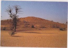 AFRIQUE De L´ouest,AFRICA,AFRIKA,SENEGAL,MBANAR - Sénégal