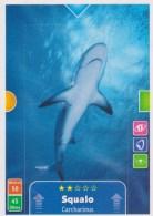 Kinder Animal Action 3D Card (Fronte E Retro) - Diddl & Ü-Eier