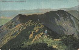 AK Riesengebirge Ziegenrücken Kozi Hrbety Nähe Rennerbaude Bouda Bei Spindlermühle Spindlerruv Mlyn Petzer Pec Aupa Upa - Sudeten