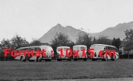 Reproduction D'une Photographie De 4 Anciens Bus Saurer Garés De Face Sur De La Pelouse - Reproductions