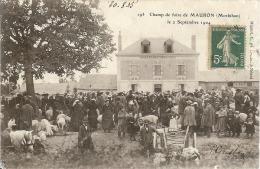 56–Mauron  Le Champ De Foire De Mauron, Le 2 Septembre 1904 - France