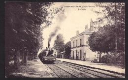 CPA 79 Celles Sur Belle La Gare Et Le Train - Celles-sur-Belle