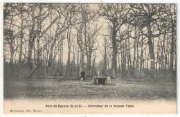 78 - Bois De BEYNES - Carrefour De La Grande Table - Edition Meyrenaud - 1906 - Beynes